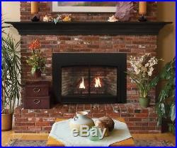 Awe Inspiring Empire Gas Fireplace Insert Package Blowout Price Innsbrook Download Free Architecture Designs Intelgarnamadebymaigaardcom