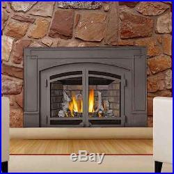 Napoleon IR3N IR Series Gas Fireplace Insert
