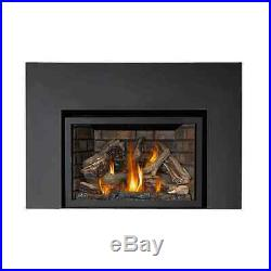 Napoleon Infrared X4 GAS Fireplace INSERT FREE SHIPPING