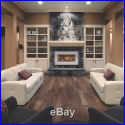 Napoleon Roxbury 3600 Gas Fireplace Insert Gas or Propane 24,000 BTU's